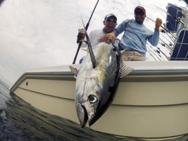 Sports Fishing Industry of Costa Rica: 60,000 Jobs and Counting